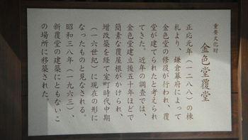 043_R.JPG