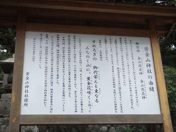 DSC00548_R.JPG