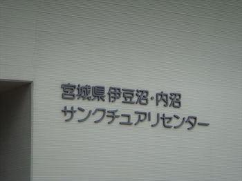 DSC00651_R.JPG