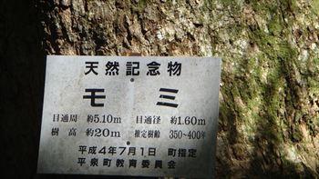 046_R.JPG